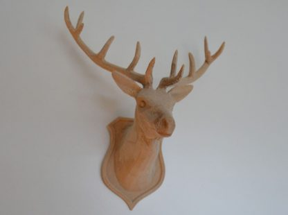 Stag head and plaque mounted on a wall